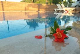 Gulce Family Apart Hotel - Antalya Трансфер из аэропорта